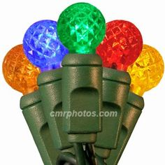10 Light Battery Operated LED G12 5 Colored Multi Light Set *** Want additional info? Click on the image. (This is an affiliate link) #Seasonal