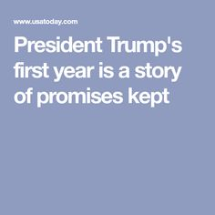 President Trump's first year is a story of promises kept