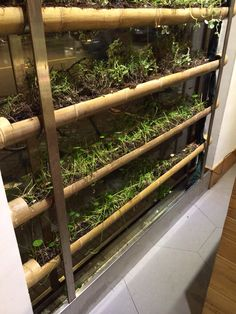 Clever bamboo planter installation with irrigation