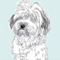 8 Etsy Picks From In-House Trend Expert (And Making It Judge) Dayna Isom Johnson Bungalow Decor, Drawing Base, Home Trends, Detailed Image, Good Old, Mans Best Friend, Pet Portraits, Fine Art Paper, How To Draw Hands