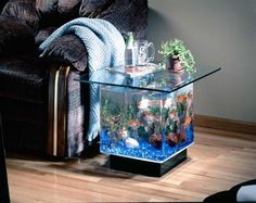 If you loved the 25 Gallon Coffee Table Aquarium but are a bit hesitant because you were in need of something that is that bit smaller then you are going to absolutely love this. Here it is, the smaller 15 Gallon Coffee table aquarium! Table Aquarium, Aquarium Mini, Aquarium Terrarium, Tropical Aquarium, Aquarium Fish Tank, Aquarium Stand, Aquarium Photos, Aquarium Lamp, Aquarium Garden