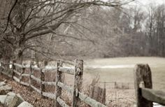 ~ Country Whispers ~