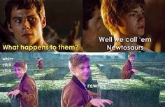I literally can't this made me laugh so hard. The Maze Runner - Community - Google+ follow me for more,ill follow back!!