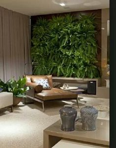 Vertical Garden In The Living Room   I Would Replace Boston Fern With  Staghorn Ferns Or Succulants   Love The Leather Chaise And The Colors And  Designs Of ... Part 72