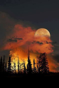 Moon Rise, Colorado, U S A , from Iryna