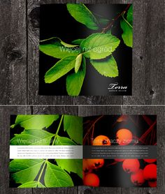 21 Beautiful and Creative Brochure Designs. I like the black background with the bright and bold colors of the images Graphic Design Brochure, Brochure Layout, Graphic Design Illustration, Leaflet Design, Booklet Design, Flyer Design, Page Layout Design, Collateral Design, Packaging