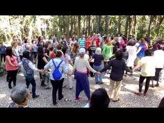 """""""Dança Circular"""" KAHUNA HO'OPONOPONO - Monica Baliu - YouTube"""