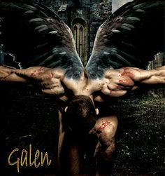 Nalini singh, guild hunter series - Galen?
