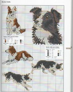 Knitting Pattern For Border Collie Dog : 1000+ images about Peysum og mynstur on Pinterest Border collies, Sheep and...