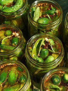 Ragin' Cajun (fresh) Pickles..these look wonderful!