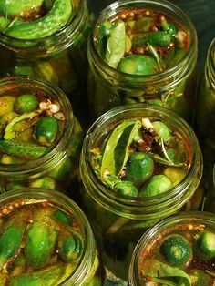 Ragin' Cajun (fresh) Pickles - I need to try these.