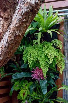 The Horticult Garden Tour - The Guava Tree Room - Ryan Benoit Design - Shade Wall diy tropical garden Our Garden Fence Landscaping, Tropical Landscaping, Backyard Fences, Backyard Shade, Shade Garden, Patio Shade, Balinese Garden, Bali Garden, Tropical Garden Design