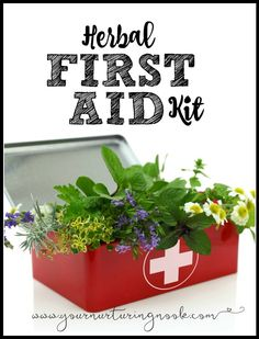 1000 Images About Home Remedies On Pinterest Essential