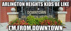 Arlington heights homeee.