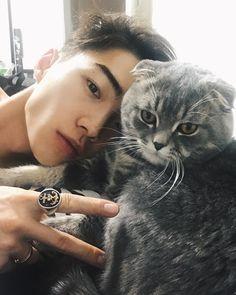 Картинка с тегом «ulzzang, boy, and cat Korean Boys Hot, Hot Asian Men, Korean Boys Ulzzang, Cute Asian Guys, Korean Men, Asian Boys, Cute Guys, Ullzang Boys, Hot Boys