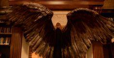 images of gabrielle in constantine | Alas de Gabriel. film Constantine-angel2.jpg