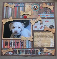 What's My Name? Perfect for Harley, Harley Renee, Poo, Poo Mon'ter, Muffin Head, Fruit Loop, Har' nee, Harls, etc.!