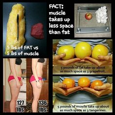 See more here ► https://www.youtube.com/watch?v=__Gi8cvdquw Tags: quick weight loss diets for women, quick weight loss center reviews, quick weight loss for diabetics - Remember that muscle takes up less space than muscle.  A pound is a pound. Muscle is just DENSER than fat hence why things feel looser when you lose fat weight and gain muscle weight.  #suckitupfitness #mondaymotivation #quote #exercise #diet #workout #fitness #health