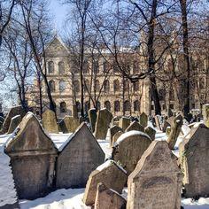 #prague #prag #praha #winter #snow #cold #jüdischerfriedhof