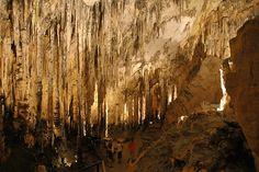The Actun Kan and Jobitzinaj Caves in Peten, Guatemala