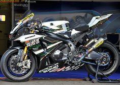 Suzuki GSXR1000 racing