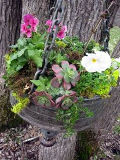 Old funnel planter hung from chains. Fill with dirt and add your favorite plants. Garden Crafts, Garden Projects, Garden Ideas, Rustic Gardens, Outdoor Gardens, Garden Junk, Outdoor Crafts, Dream Garden, Yard Art