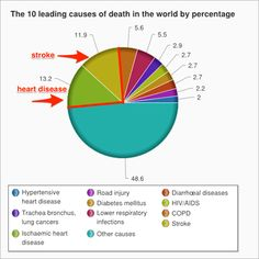 causes of death pie chart