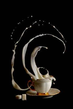 A little cream with your coffee?☕☕