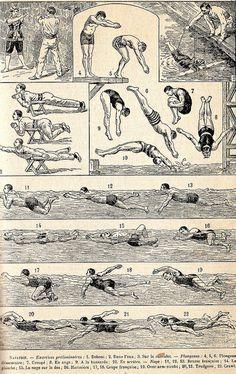 The Le nouveau petit Larousse Vintage Prints, Vintage Posters, Posture Drawing, Swimming Memes, Vintage Swim, Figure Sketching, Nautical Art, Print Layout, Beach Art