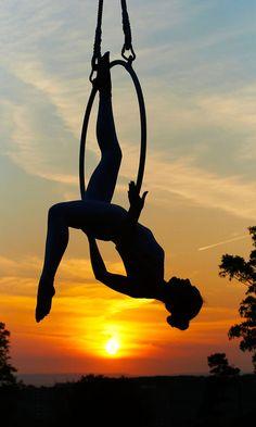 flight of fancy - Nicole Pearson, Lyra