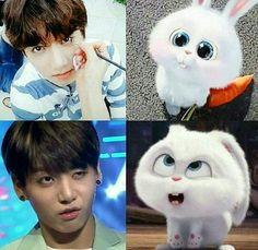 bts i see no difference memes - Bing images Kookie Bts, Jungkook Fanart, Jungkook Cute, Namjoon, Taehyung, Hoseok, Suga Suga, Bts Memes Hilarious, Bts Funny Videos