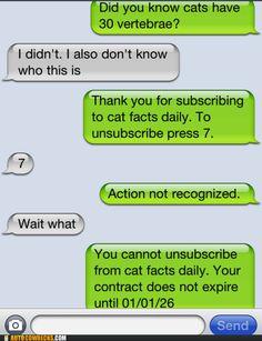 bahahaha can't escape cat facts