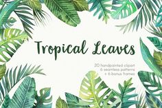 Tropical leaves by Sсherbynka on @creativemarket