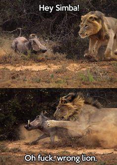 """welele: """" León equivocado ¿Es la idealización de la amistad entre animales que de hecho se comen entre sí una técnica de fomento del veganismo? Ahí lo dejo Enviado por alvaronorris. """""""