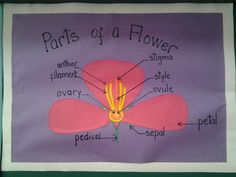 How to make a poster using layers of paper #school