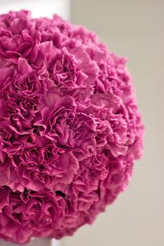 Contemporary carnation topiary design created by the Jane Packer team