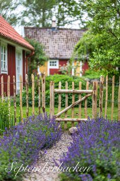 Vad jag drömmer om till min trädgård just nu… Garden Fencing, Garden Paths, Garden Landscaping, Rustic Gardens, Outdoor Gardens, Fenced Vegetable Garden, Farmhouse Garden, Garden Inspiration, Beautiful Gardens