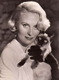 21 Celebrities Who Own Siamese Cats