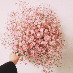 Wedding Flower Gypsophila seeds Gypsophila paniculata L. Bridal Bouquet Coral, Wedding Bouquets, Wedding Flowers, Satin Flowers, Pink Flowers, Simple Flowers, Beautiful Flowers, Gypsophila Bouquet, Fall Wedding Decorations
