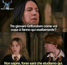 Headcanon Harry Potter, Harry Potter Quiz, Harry Potter Tumblr, Harry Potter Anime, Harry Potter Pictures, Harry Potter Universal, Harry Potter Movies, Harry Potter World, Harry And Hermione