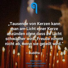 #zitate #sprüche #bluequotes #buddha