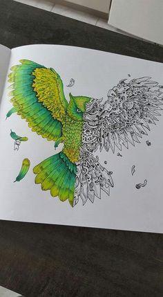 en-cours Imagimorphia aux CDC prismacolor.