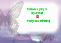 DebParm uploaded this image to 'The Law of Attraction'.  See the album on Photobucket.