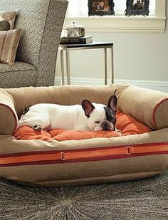 Give beloved pet a stylish and comfortable place to rest with the Runway Couture Pet Bed that features a thick, plush cushion and is available in two vibrant color schemes.