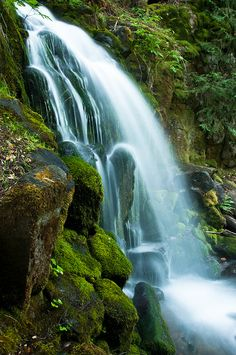 Sweetbriar Falls - Shasta County, California