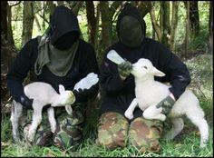 animal liberation = human liberation