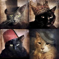 TITLE: Cats in the Hats! Collection  SIZE: All 5x5    Includes:  -Captain Grey  -Queen Cora  -Vinnie Valentino  -Fez Felix    All the cats are