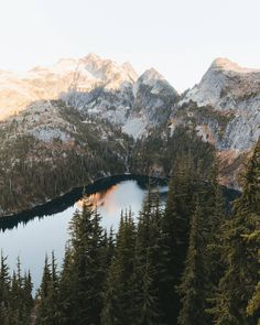 top of the world - theme | life on earth - mountains - lake - lakes - forest - mountain - natural - wilderness - alive - adventure - explore - wanderlust - idea - ideas - inspiration - beautiful - wild - trip - travel - hiking - camping - backpacking - discover places - nature photography