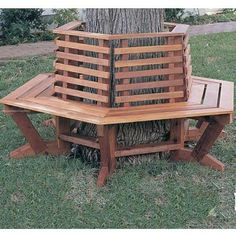 52 Best Tree Bench Ideas Images Gardening Cat