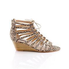 Rachel Bilson's Shoes